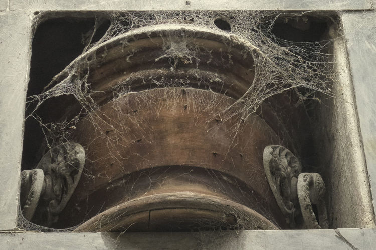 Long death Cemetery Coffin Creepy Cript Death Life And Death Old Recoleta Cemetery Spiderweb