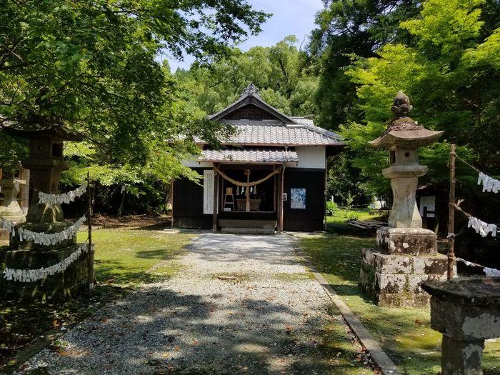 Kiyotake Enjoy Summer Happy Miyazaki Tree Architecture Built Structure