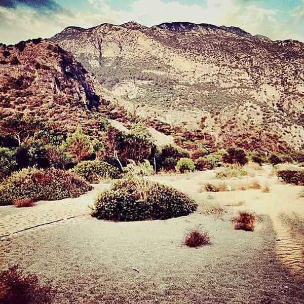 Shurb Green Sky Beach Landscape Hill Sand Life In Colors ölüdeniz Fethiye Turkey