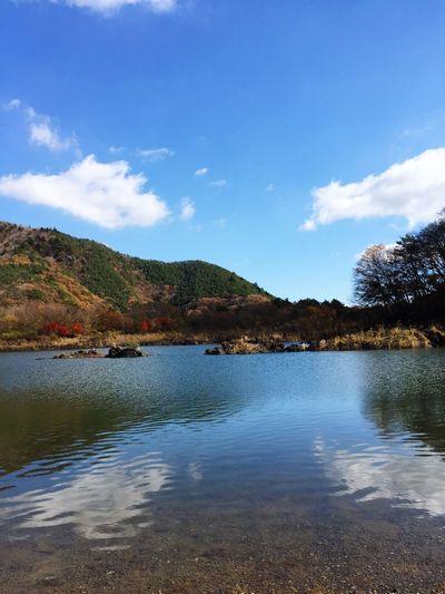 綺麗な景色にめっちゃ癒されました😊✨✨☀️✨✨ Beauty In Nature Water Sky Tranquility Mountain Nature Scenics Tranquil Scene Outdoors Day Wilderness No People Cloud - Sky Lake Landscape 精進湖 湖畔 ブラックバス 青空 紅葉 紅葉シーズン