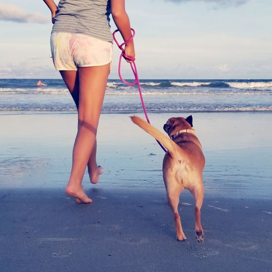 Low section of girl walking with dog on shore at beach