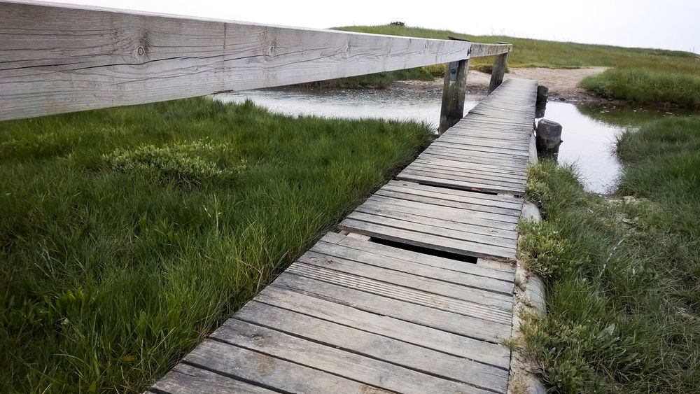 Beauty In Nature Day Grass Historical Paths Landscape Nature No People Northsea Northseatrail Outdoors Path Rural Scene Sky Tranquil Scene Tranquility Water Wooden Path
