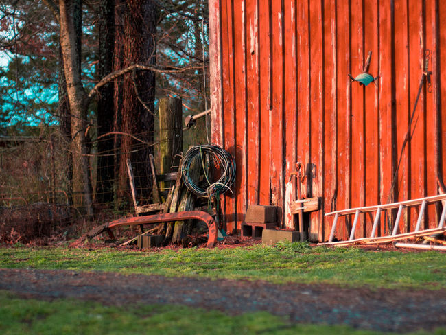Barn Farm Ladder Orange Winter Day Fall Farm Equipment No People Outdoors Tennessee Tree