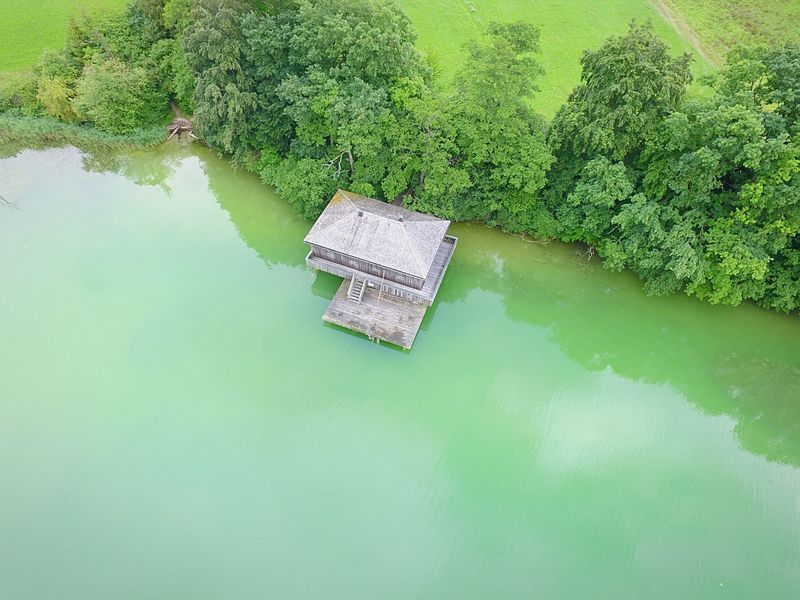 Hartsee Green Color High Angle View Day Lake Beauty In Nature