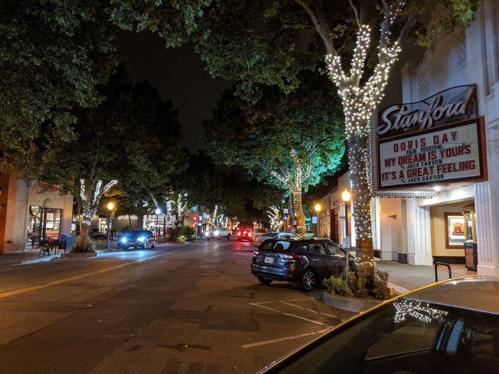 View of illuminated street amidst trees at night