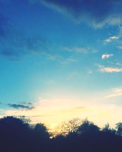 London Regents Park Sunset Sunset In London