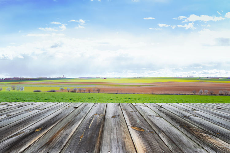 Wooden table top with fresh green field and blue sky in summer. Space for present a product. Beautiful Field Grass Green Land Natural Nature Wooden Table Background Blue Sky Crop  Design Display Empty Farming Ground Landscape Product Sky Spring Summer Sun Table Tabletop Wooden