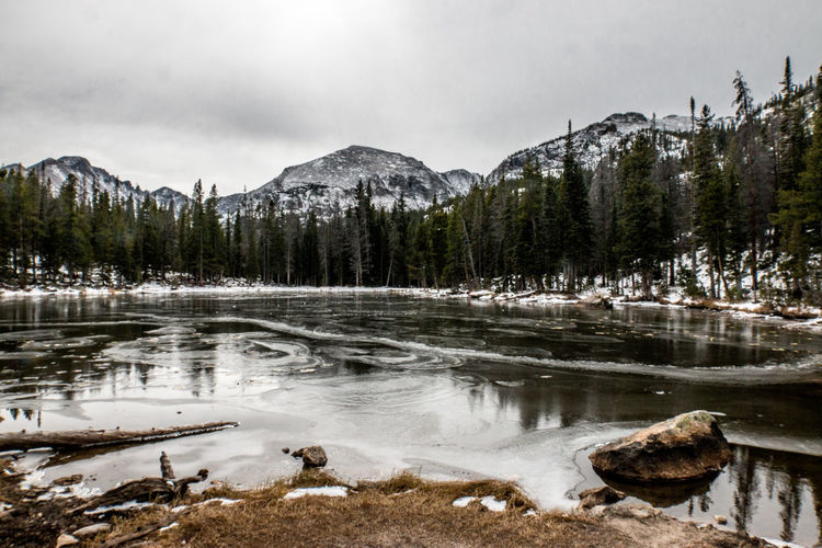 Winter lake Lake US Nationalpark Forests EyeEm Best Shots EyeEm Nature Lover Travel Destinations Travel Photography Wintertime Tree Water Snow Mountain Winter Lake Cold Temperature Reflection Sky Landscape Pine Woodland Wilderness