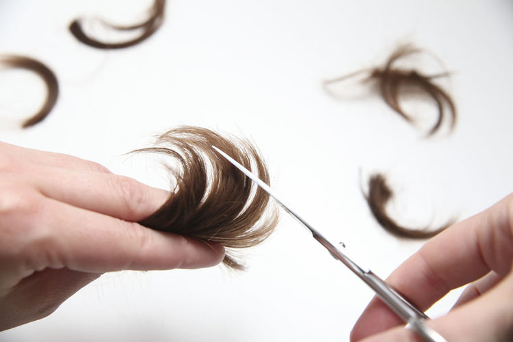 Care Cut Hair Straight Styling Background Beauty Brown Hair Close-up Detail Hair Care Haircut Haircut Sciss Haircuts Hairdresser Hairdressers  Hairstyle Health Isolated Background Lock Of Hair Saloon Style White