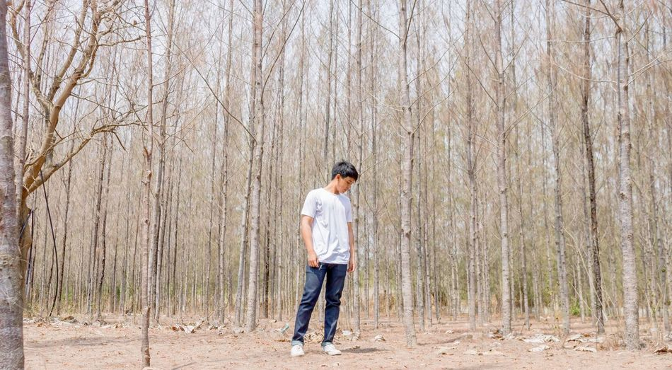 A young man in white shirt is looking down to the ground in the dry forest. White Shirt Posture Black Hair Sunlight Thai Man Boy Asian  White Shirt Fall Autumn Summer Forest Looking Down One Person Casual Clothing Standing Plant Leisure Activity Full Length Lifestyles Nature Day Real People Outdoors Tree Growth Rear View Jeans Land