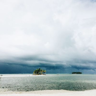 Tropical island in the San Blas archipelago, Guna Yala, Panama. Copy Space Panamá San Blas Square Beach Beauty In Nature Cloud - Sky Day Horizon Over Water IPhoneography Idyllic Landscape Mobile Photography Nature No People Outdoors Scenics Sea Sky Stormy Tranquil Scene Tranquility Travel Destinations Tree Water