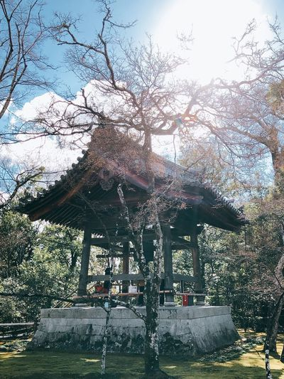 Kyoto Asian