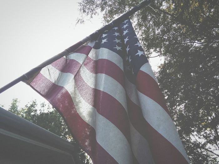 Patriotism Flag Day Textile Tree Outdoors Red No People Close-up Low Section Sky Stars And Stripes The Week On EyeEm