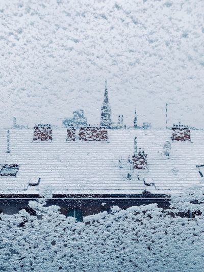 Rooftops Snow On Window Snow Winter Cold Temperature Snow Nature Day No People Beauty In Nature White Color Outdoors Tranquility Frozen