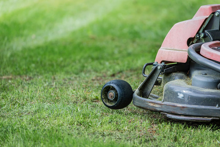 Lawn mower in back yard