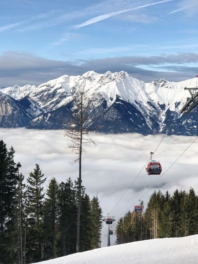 Tourism Travel Destinations Outdoors Leisure Activity Austria Fir Tree Tyrol Alps Innsbruck Skiing Snow Winter Mountain Cold Temperature Nature Beauty In Nature Sky Scenics Weather Cloud - Sky Tree Landscape Transportation Mountain Range Snowcapped Mountain Day Tranquil Scene Overhead Cable Car Tranquility Outdoors