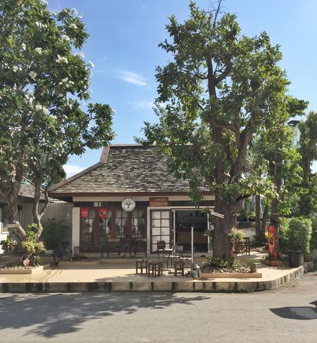Tree Built Structure Building Exterior Chaing Mai, Thailand Chaing Mai Cafe Sky Architecture