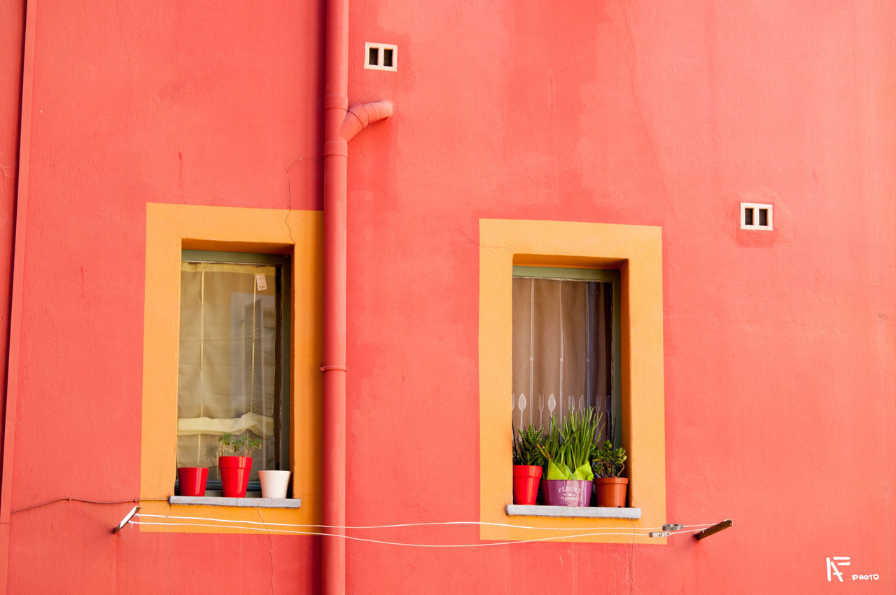 architecture, built structure, building exterior, window, potted plant, red, no people, day, outdoors, plant, window box, nature
