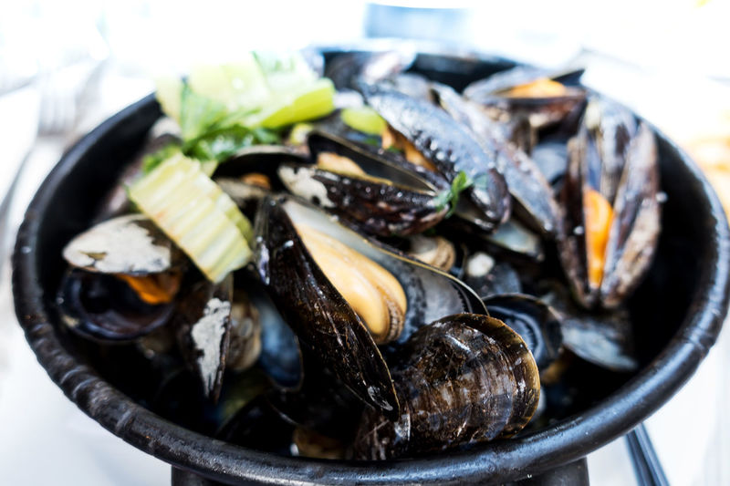 Close-up of mussels in bowl