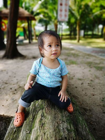 Cute baby girl looking away while sitting on log in forest