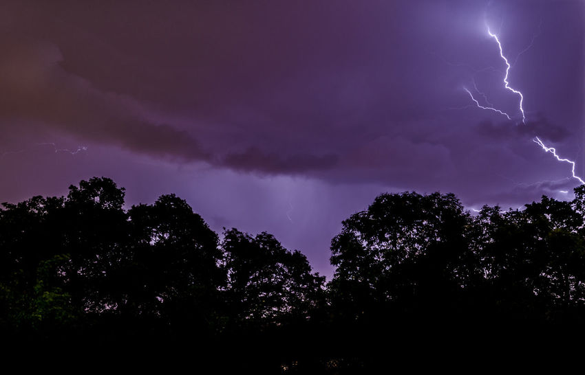 These photos are from an amazing lightning storm that moved through my area a few weeks ago. Beauty In Nature Cloud Cloud - Sky Cloudy Dark Dramatic Sky Growth Idyllic Low Angle View Majestic Nature Night No People Outdoors Overcast Power In Nature Scenics Sky Storm Cloud Tranquility Tree Treetop Weather