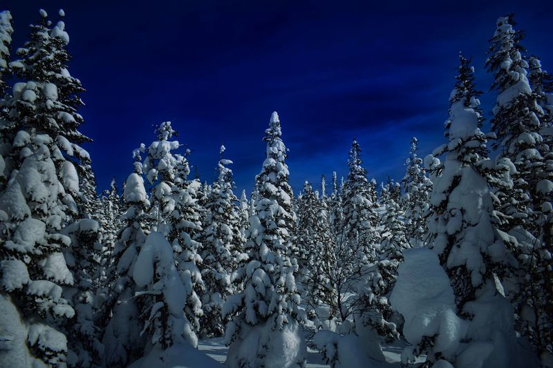 Northern Canada