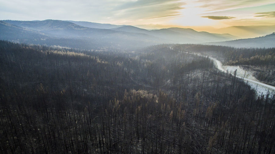 Aerial Photography Aerial View Beauty In Nature Burnt Burnt Trees Dji Drone  Dronephotography Fire Forest Fire Forrest Highway Landscape Mountain Nature No People Outdoors PNW Rugged Scenics Sky Sunset Terrain Washington Washington State