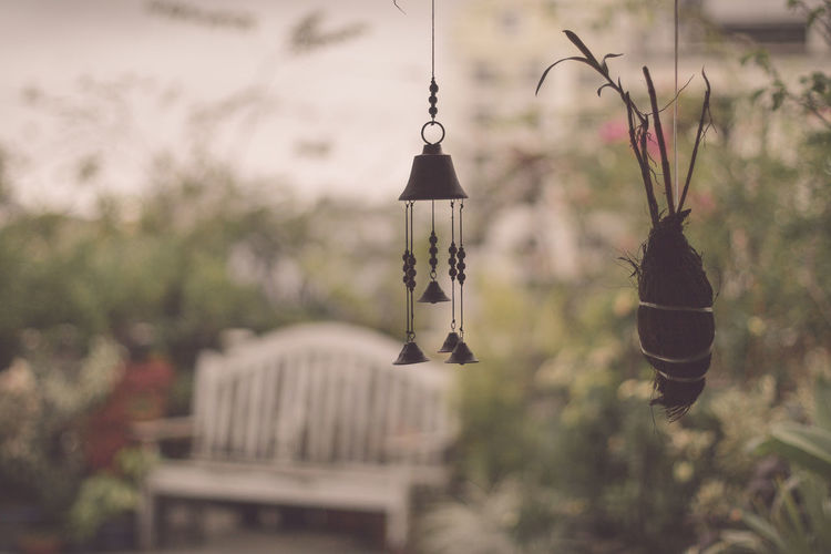 Wind Chime And Plant Hanging At Yard
