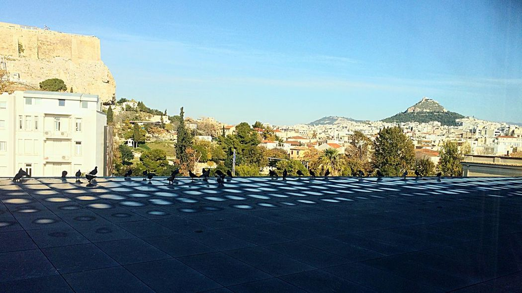 Eastern of the Acropolis Rock is the Lycabettus Hill among the City Blocks of Athens . Blue Attic Sky and Pigeons at the edge of the Terrace I Love My City