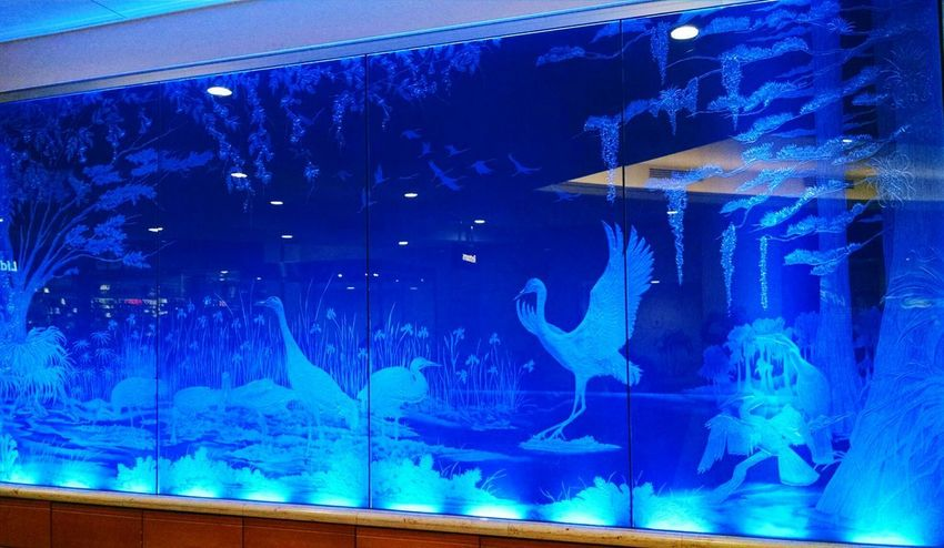 Blue And White Blue And White Etching Bird Photography Bird Art Animal Themes Animal Art Wildlife & Nature Art Etched Glass Etched Mural Blue EyeEm Ready   Visual Creativity