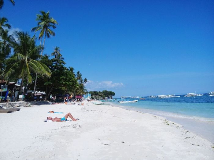 Beach life Beauty In Nature Clear Sky Nature Vacations Sky Day Tree Beach Sand Sea Outdoors Blue Tourist Resort Journey Destination Beauty In Nature Coconut Trees EyeEmNewHere