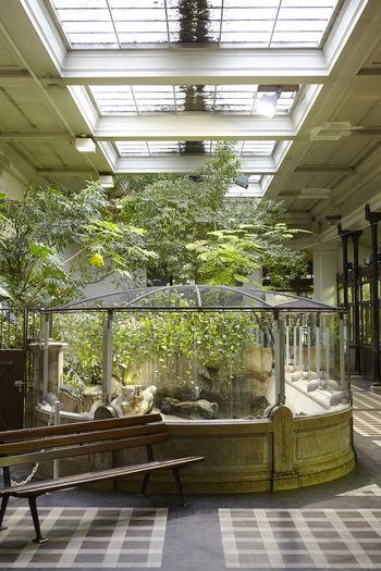 Skylight Zoo