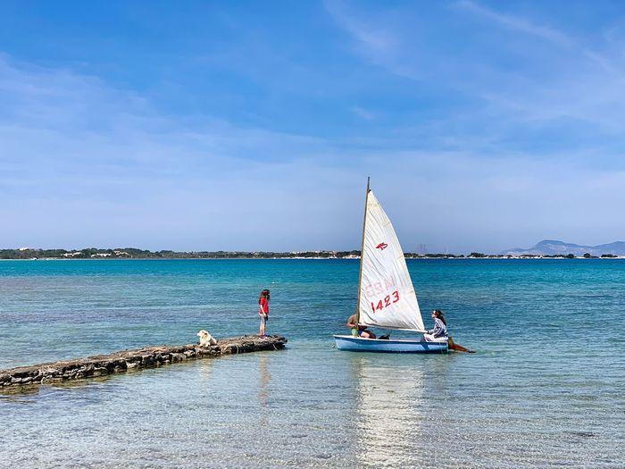 Sailboat sailing in sea against sky