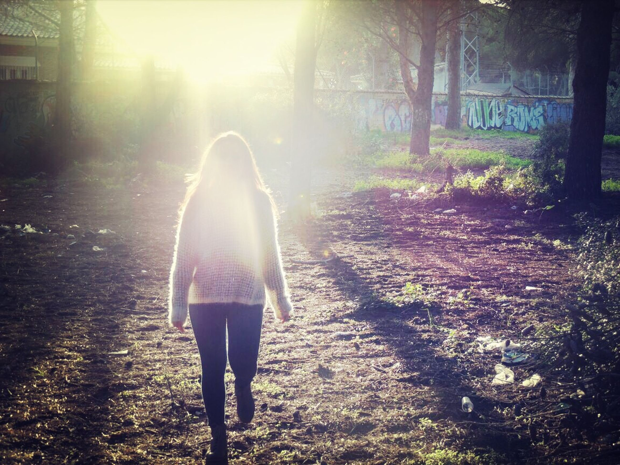 sunbeam, rear view, full length, sun, lifestyles, sunlight, walking, standing, lens flare, leisure activity, tree, men, person, casual clothing, outdoors, back lit, nature, the way forward