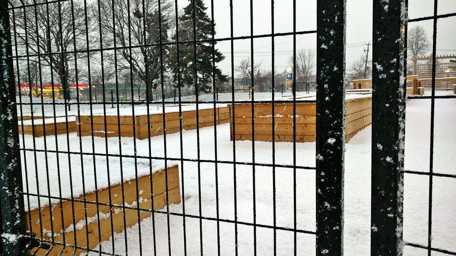 Lines Metalfence Snow ❄ Snowcovered Winter Wintertime