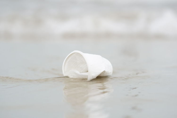 Close-up of white ice cream floating on water