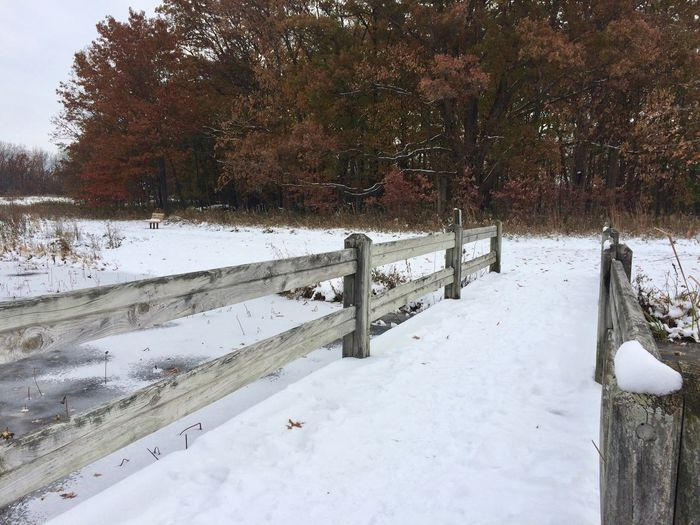 snowy wooden