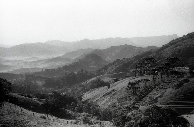 serra da mantiqueira Land Landscape Analogue Photography Film Photography Filmisnotdead Blackandwhite Mountain Tree Rural Scene Fog Agriculture Sky Landscape Mountain Range Valley