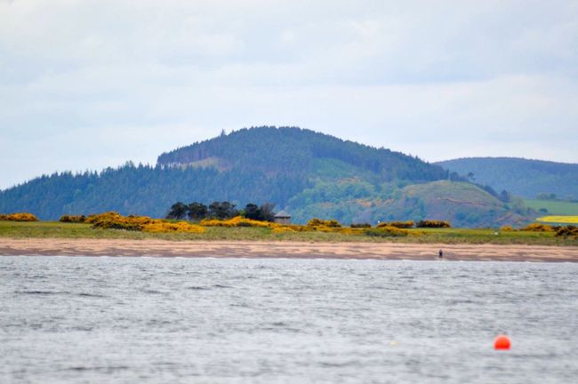 Nature Water Outdoors Beauty In Nature Scenics Tree Trees Tree_collection  Hill Hillside Rural Scene Scottish Highlands Scotland Fort George Moray Firth