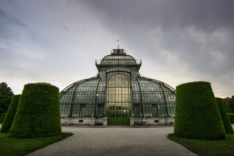 Palmenhaus im Schlosspark Schönbrunn EyeEm Best Shots EyeEm Gallery EyeEm Selects EyeEmBestPics Eyeemphotography Buchsbaum Gewächshaus Glas Green Himmel Reflection Clouds Formschnitt Frontal View Glass No People Outdoors Palmenhaus Schönbrunn Reflections Sky Stahl Steel EyeEmNewHere The Architect - 2018 EyeEm Awards The Traveler - 2018 EyeEm Awards