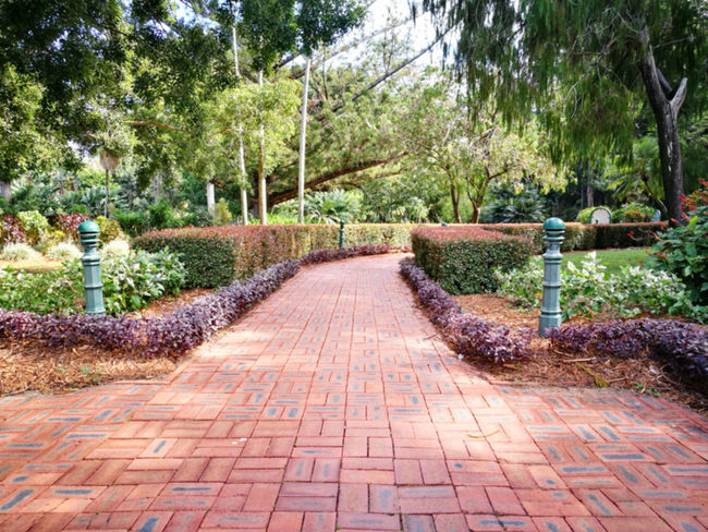 Cobblestone Diminishing Perspective Direction Footpath Garden Path Growth Nature No People Outdoors Park Park - Man Made Space Plant Stone The Way Forward Tranquility Tree Treelined