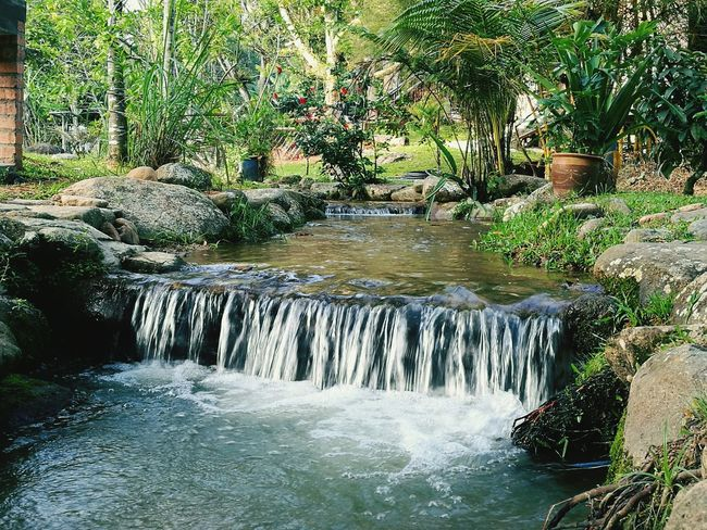 Stream Water Nature Beauty In Nature Outdoors No People Chegal Resort Janda Baik Malaysia Pahang