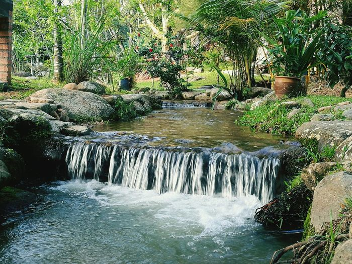 Stream Water Nature Beauty In Nature Outdoors No People Chegal Resort Janda Baik Malaysia Pahang