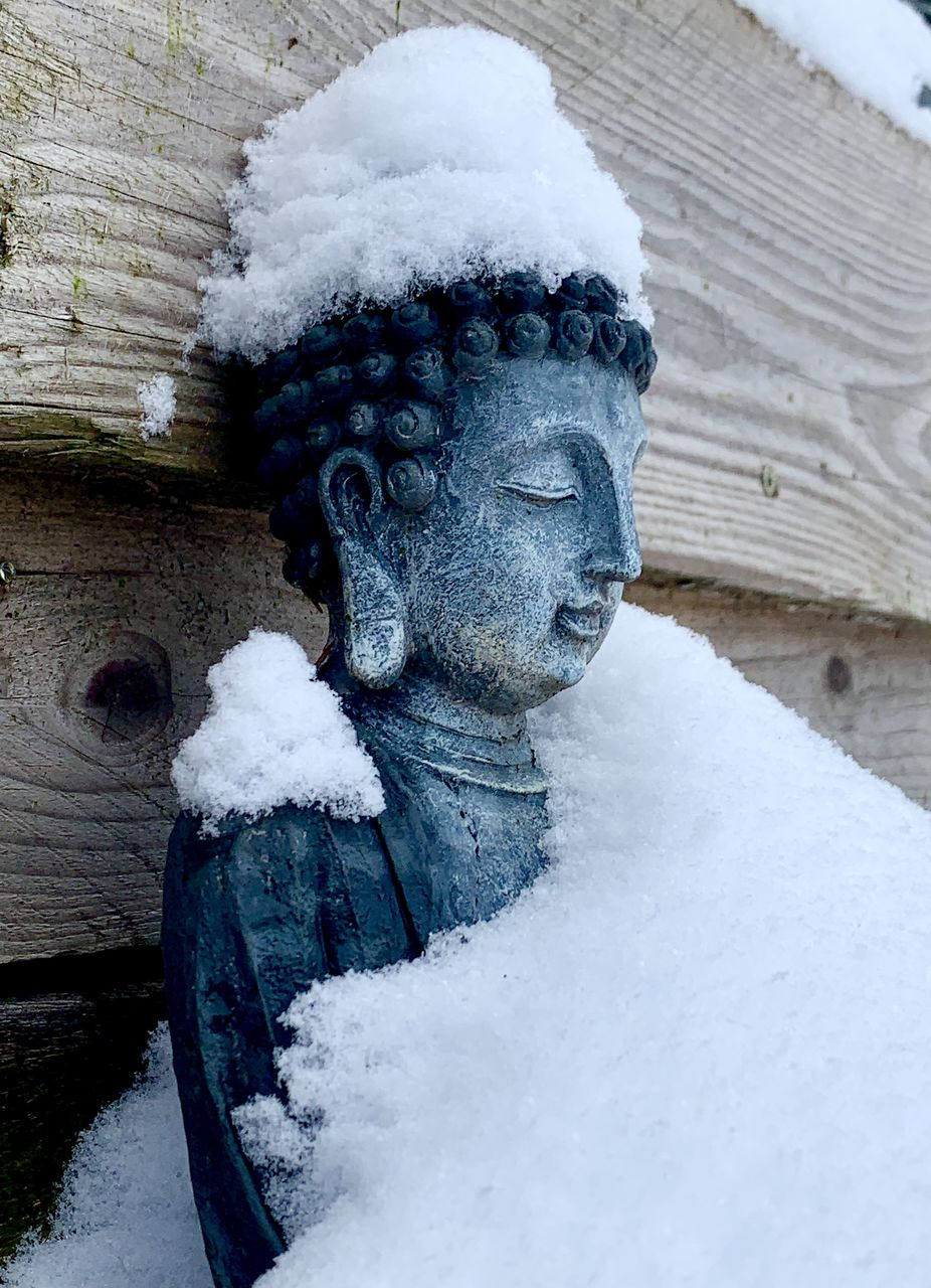 CLOSE-UP OF SNOW COVERED STATUE ON WOOD