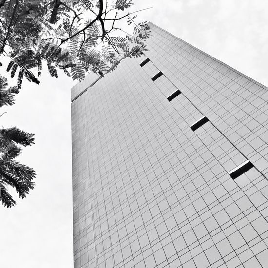 Black And White All_shots Eye4photography  Architecture_bw