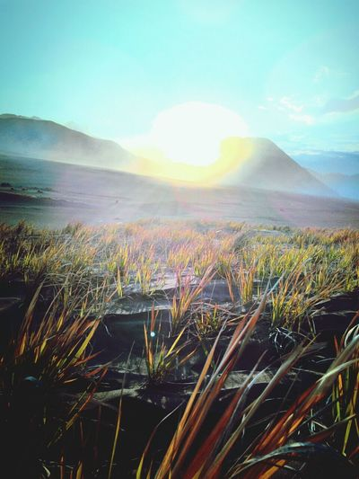 Dreamfields INDONESIA Mountain View Travel Photography