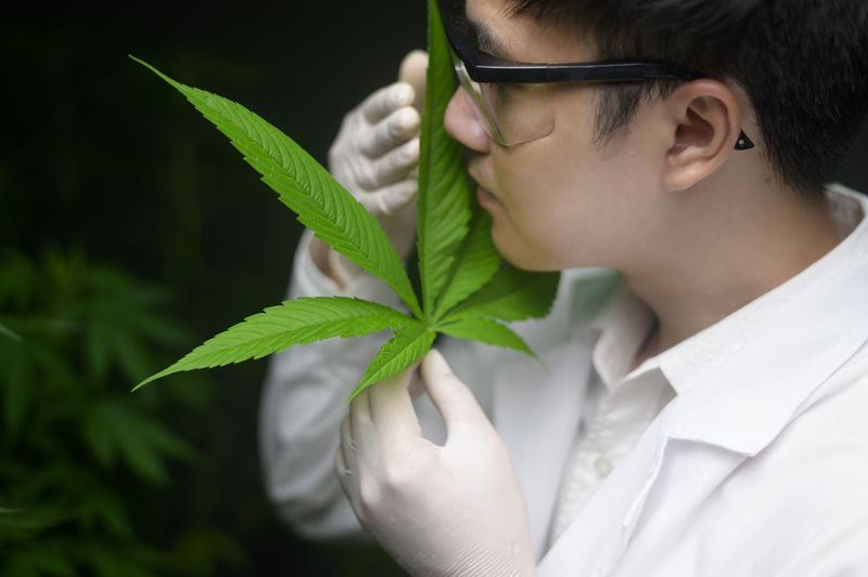 Portrait of teenage girl holding plant