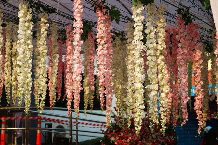 View Of Flowers Hanging In Market