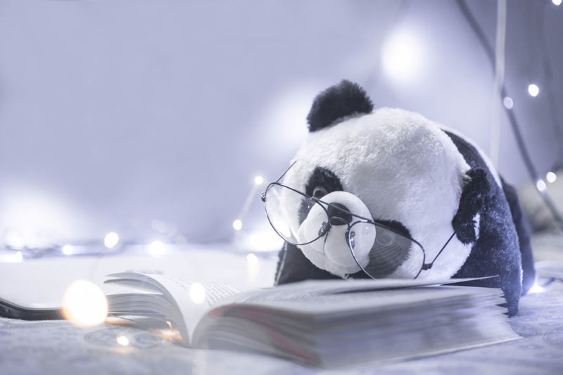 Close-up of panda toy with eyeglasses and book on bed