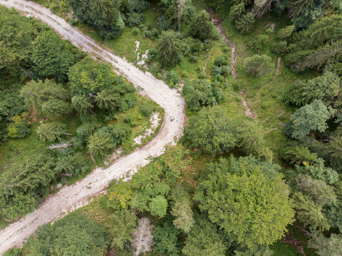 Dronephotography Aerial View Drone Point Of View Nature Land Day No People Outdoors Directly Above Curve Track Tree Forest Environment Non-urban Scene Road Beauty In Nature Green Color Triangle Shape Wood
